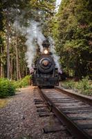 The #45 Steam Engine