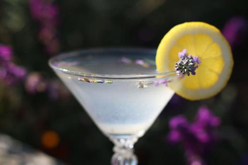 Gallery Image Albion-River-Inn-Bar-Lavender-Cocktail-4.jpg