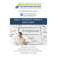 Small Business Owner's Boot Camp (2 - Day Camp)