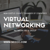 Virtual Networking Lunch