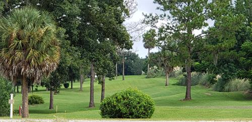 9 Hole Seasonal Executive Golf Course