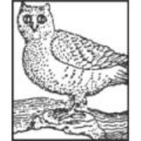 Owl Creek Conservancy
