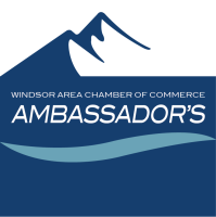 Ambassador Meeting & Networking