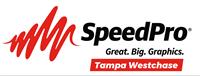 SpeedPro Tampa Westchase