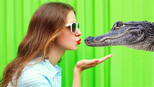 Kiss a gator????