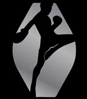 Platinum Martial Arts Kickboxing Oldsmar