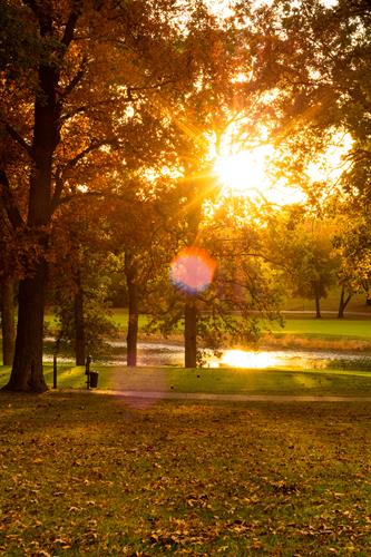 Gallery Image RKA_2448.jpg