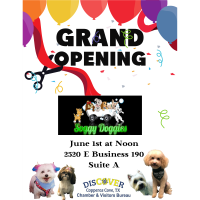 Soggy Doggies Grand Opening - Ribbon Cutting