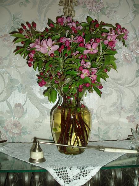 Gallery Image Apple_blossoms_in_dining_room.jpg