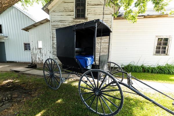 Gallery Image Amish_20_117035801_118556303283602_8440410799082793443_n.jpeg
