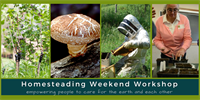 Homesteading Weekend Workshop