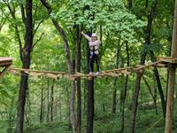 Summer High Ropes Challenge at Eagle Bluff
