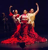 "Zorongo Flamenco Dance Theatre presents ""Café Flamenco"""