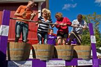 Wine & Harvest Grape Stomp
