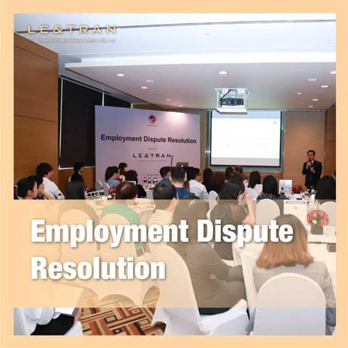 Employment dispute resolution