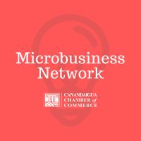 Microbusiness Network Meeting