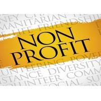 Non-Profit Committee