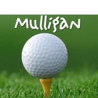 29th Annual Golf Mulligan & Raffle