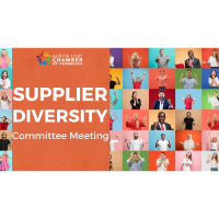 Supplier Diversity Committee Meeting