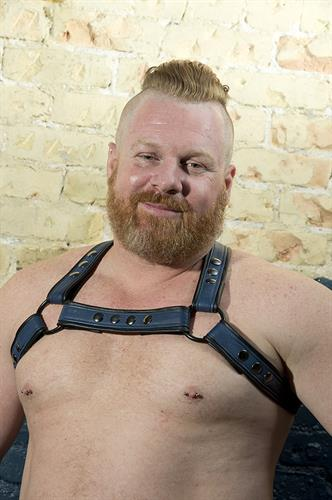 Custom Harness