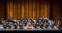 The Austin Symphony Orchestra