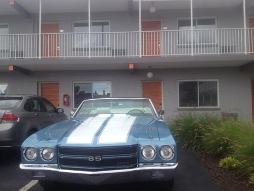 Remember Hotel Royal Oak for the Dream Cruise!!