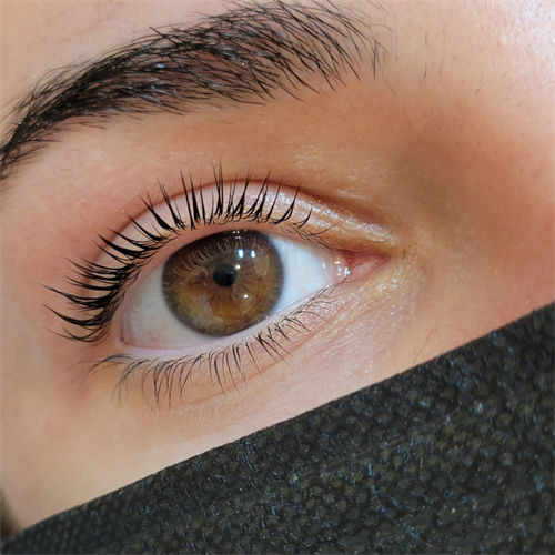 Lash Lift and Tint with Elleebana Brand Products