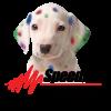 Ribbon Cutting - Speed Pro Imaging