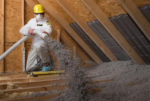 Hoffman's Exterminating also offers TAP insulation to protect your attic from pests and heat-loss!