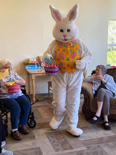 The Easter Bunny arrived! 2020