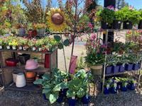 6th Semi Annual Peddlers Fair/ Fall Extravaganza