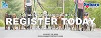 Halifax Humane Society 10th Annual Mutt Strutt Virtual Experience