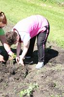 Gardening at KCCDD