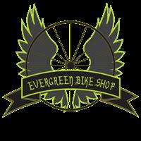 Experienced Bike Mechanic
