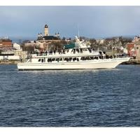 Winter Birding Boat Trip