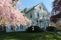 The Beech Tree Bed & Breakfast