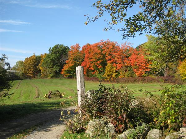 Gallery Image Cogswell's_Grant-Autumn_on_the_farm.JPG