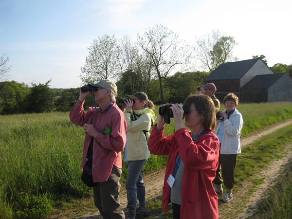 """Introduction to Birding"" program with Mass Audubon"