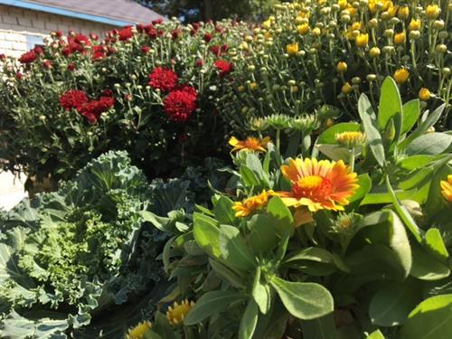 Seasonal Garden Center
