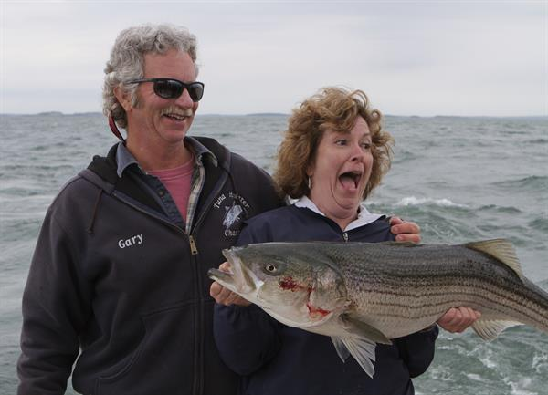 June Striped Bass, BOMA Tournament Finalist, Striped Bass Charter