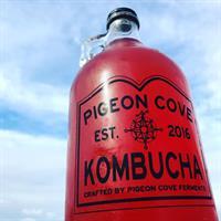 Make Kombucha with Backyard Growers & Pigeon Cove Ferments