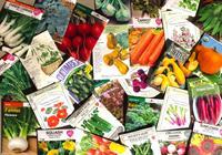 Backyard Growers Online Garden Shop