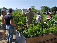 Backyard Growers is seeking a full-time Program Coordinator