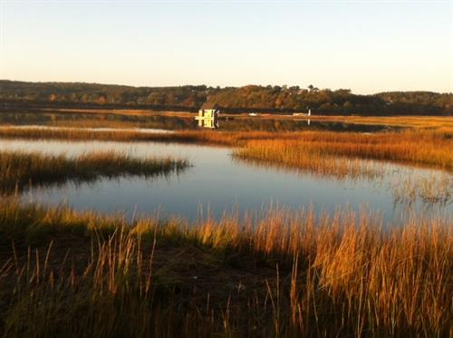 Gallery Image Morning_on_the_Marsh.jpg