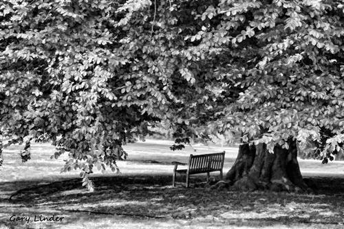 Shady Oak - Coolidge Point