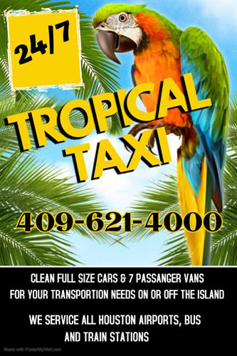 Gallery Image TROPICAL_TAXI_2.jpg