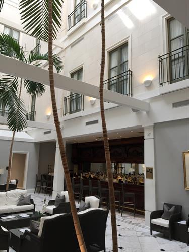 Tremont Hotel Lobby