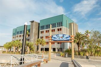 Sea Star Base Galveston