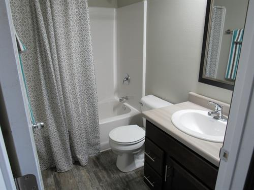 One of 2.5 baths in unit