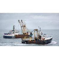 Brexit and Commercial Fishermen: FREE up-to-date Legislation & Documentation Training